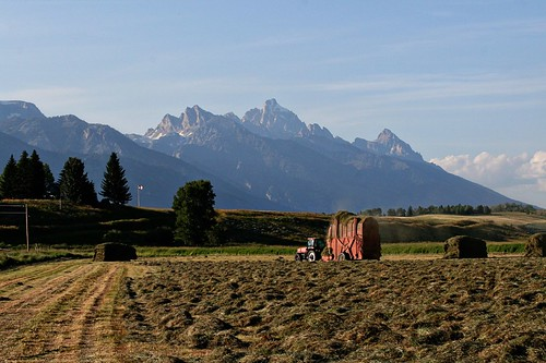 The Grand Tetons at dusk, with haying process in the foreground.  Picture taken from Rt. 22 west of Jackson.