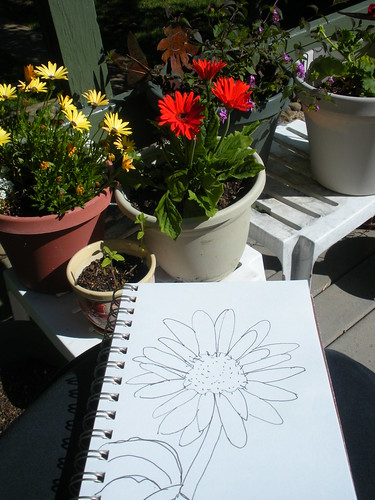 Gerbera daisy journal (3)