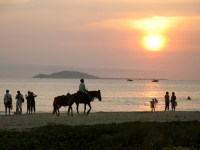 A horse, of coruse, at sunset in Sanya