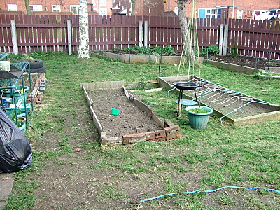 the pit aka lawn is now all neat and tidy!