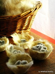 Felted Fleece Spring Baskets & Pussy Willow