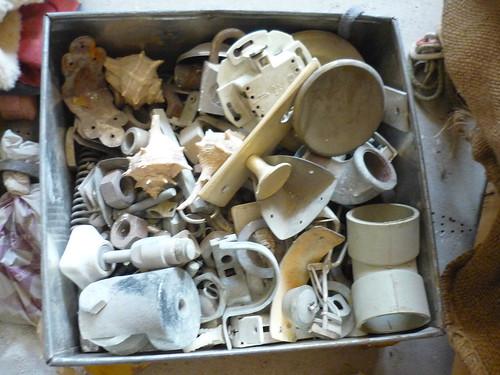 A box full of stuff, including sea shells