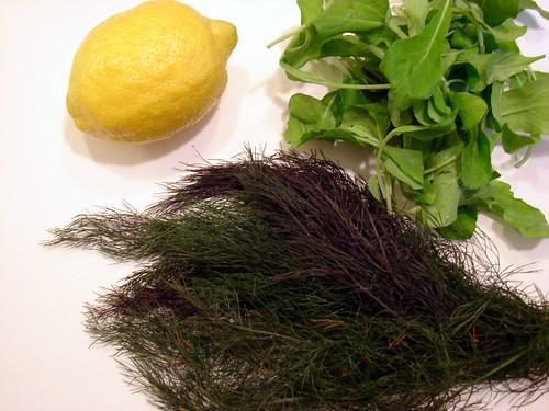 lemon, arugula, bronze fennel