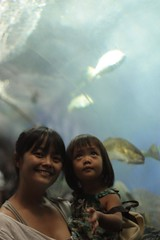 in the aquarium's tunnel