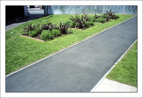Functional Landscape