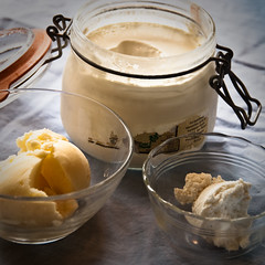 Adventures in dairy