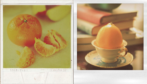 {citrus} (by Leaca's Philosophy)