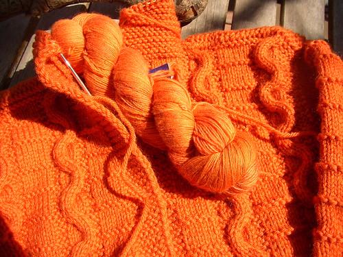 orange trim snakes