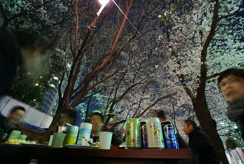 Cherry blossoms by night, Tokyo