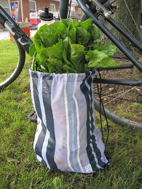 Lettuce Put on Our Back Pack