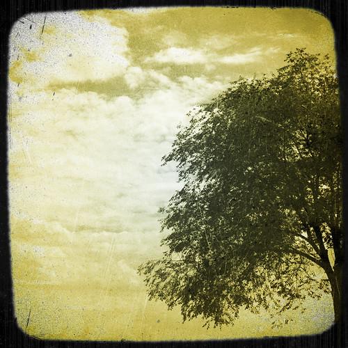 (137/365) Barrenubes by albertopveiga