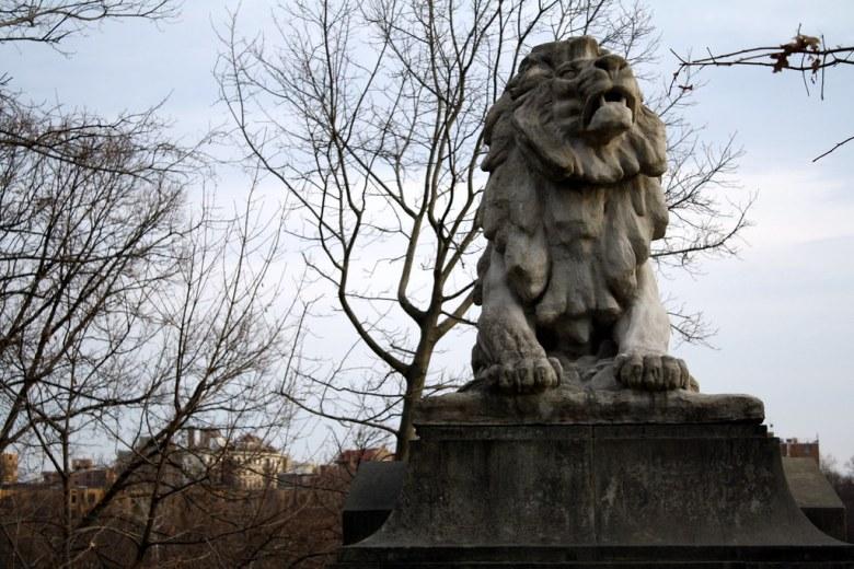 ominous lion