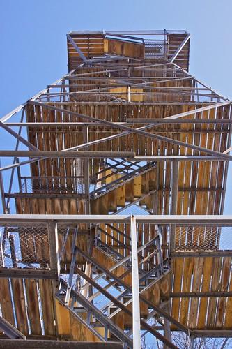 Forest Glen observation tower