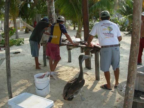 isla mujeres trip 2009 376