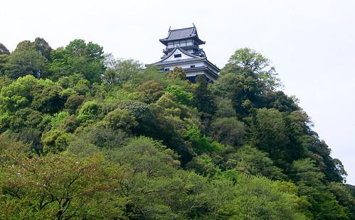 Castillo. Inuyama-jo.