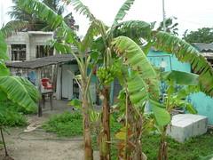 isla mujeres trip 2009 202