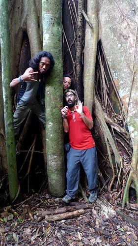 Bukit Lawang jungle fever