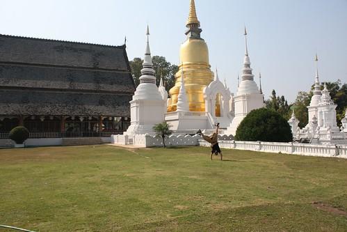 Chiang Mai Cartwheel