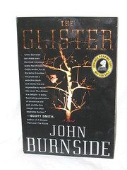 The Glister - John Burnside
