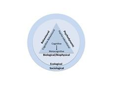 Conceptual models of behaviour