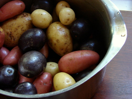 tri-colored potatoes