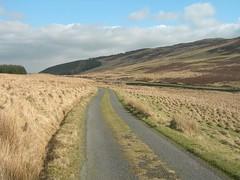rural_dual_carriageway