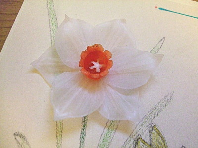 daffodil made from parchment paper