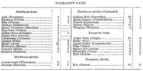 Farragut Square flora