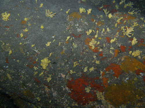 Fondo de la cueva de agua dulce