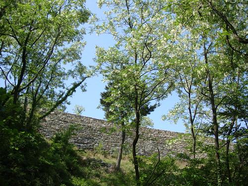 Mauer Mai