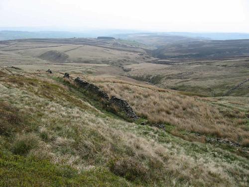 Haworth Moor