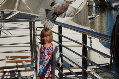 Elle met duif aan de haven