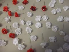 Little flowers!