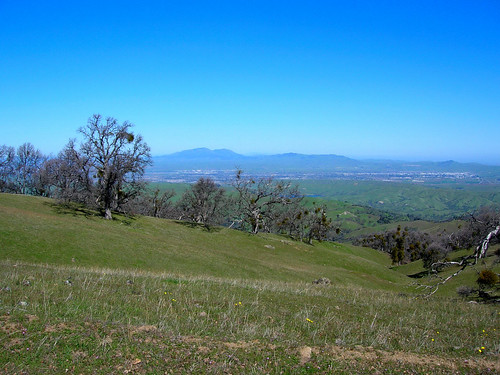 View of Mount Diablo and Livermore Valley