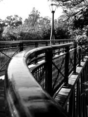 University footbridge