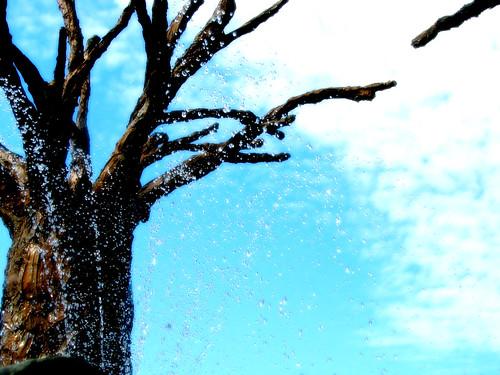 treespray1of4_ambiance