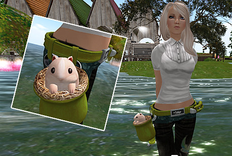 Hamster Belt Cioccolata Hunt Prize from D-Lab