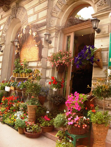 Charming flower shop