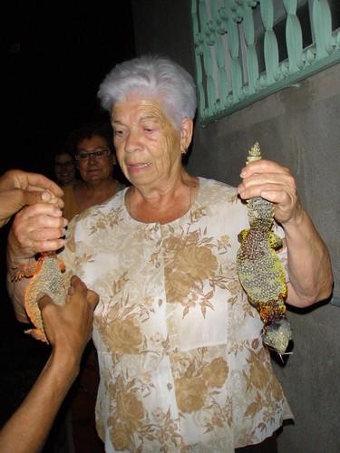 La iaia Maria i els 2 lagartus