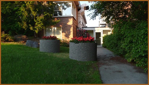 Office building with mature landscaping, Anchorage.