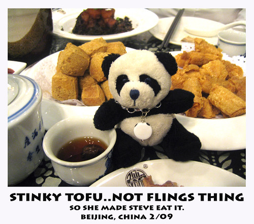 Steves trip to Beijing last week ..he took my stuffed panda Fling Fling along for the ride