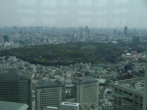 Yoyogi Koen, view from Tochou