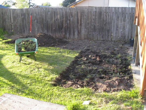 My New Plot, Free of Sod