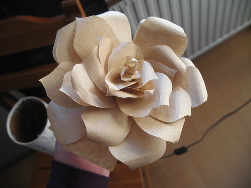 coffee filter rose