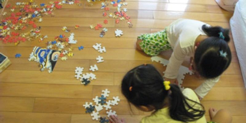【拼圖】白花花的拼圖/反著拼圖(4.8ys)