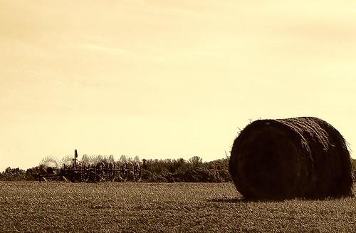 The Hay Rake and Bale