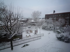 Snow Day 02-02-09 (2)