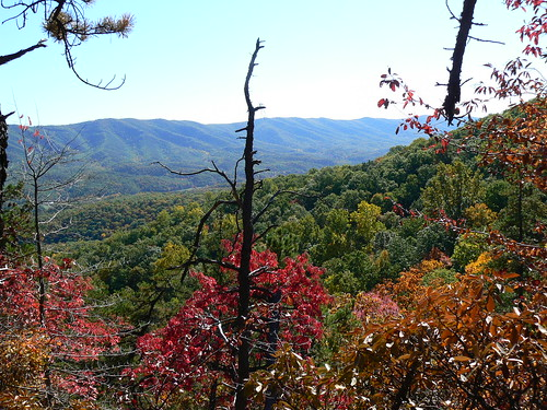 Sinking Creek Mountain - Ascent - Colors