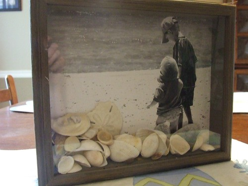 Shell Shadowbox1