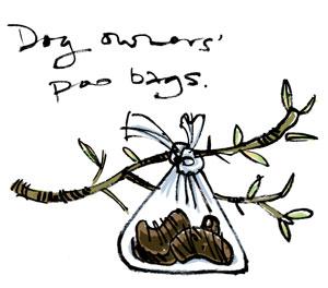 Bag o' sh*t